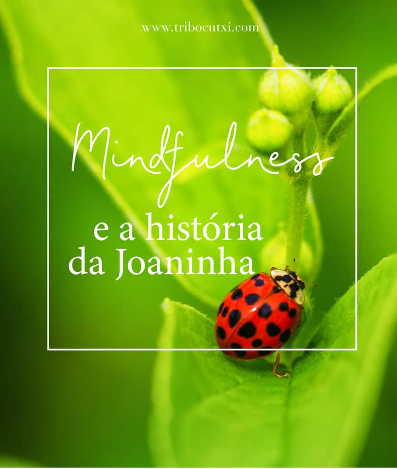 Mindfulness e a história da Joaninha